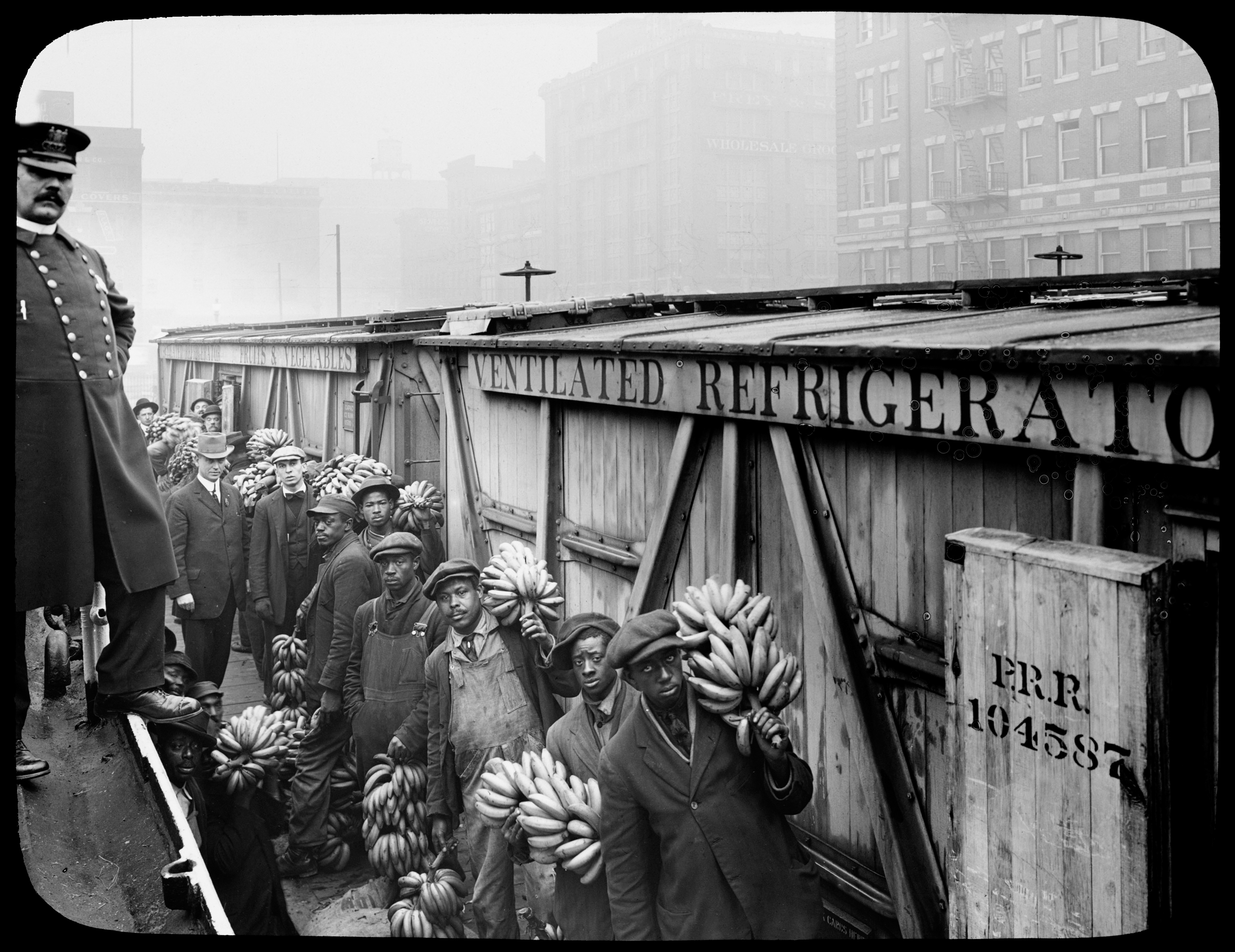Photograph of the Inspection of Bananas in Baltimore, Maryland (1910)