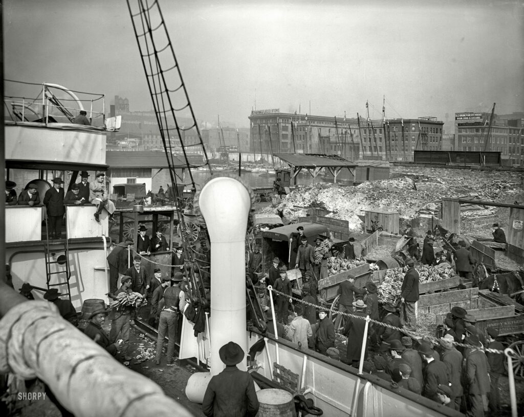 """Baltimore, Maryland, circa 1905. """"Unloading banana steamer."""" A teeming scene that calls to mind the paintings of Brueghel, if Brueghel ever did bananas. Note the damage from the Great Fire of 1904."""