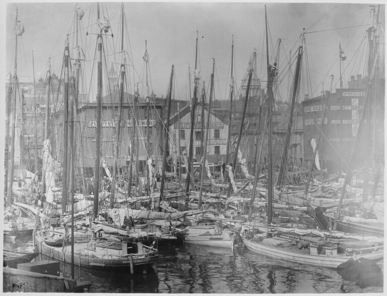 oyster fleet in Baltimore Harbor