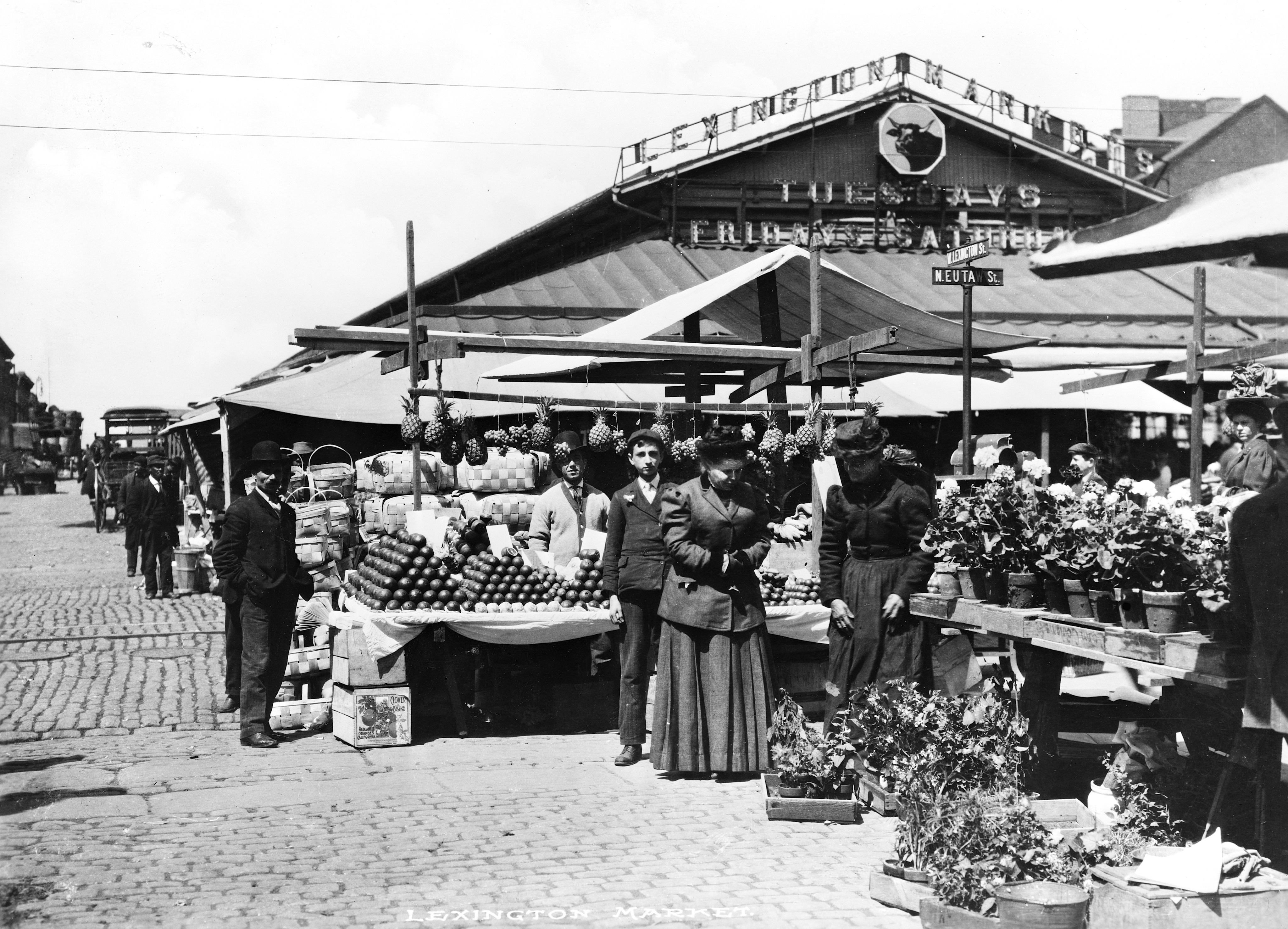 Great Photo of Lexington Market in the Late 1800s