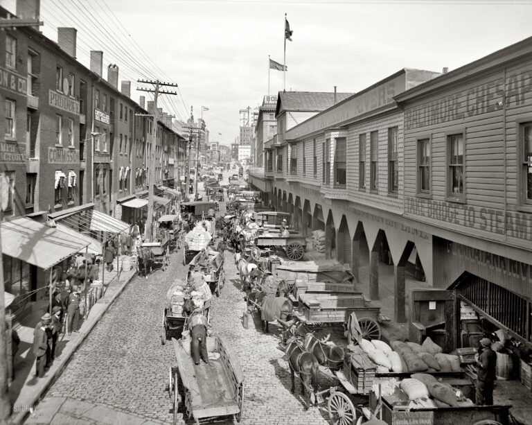 "Baltimore, Maryland, circa 1906. ""Light Street looking north."" 8x10 inch dry plate glass negative, Detroit Publishing Company."
