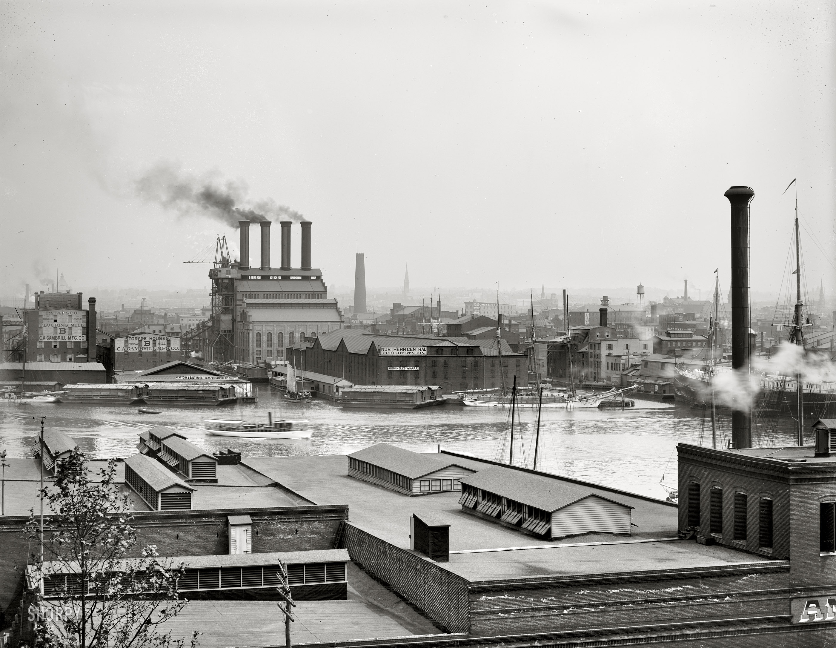 Clear 1903 View of Baltimore from Federal Hill