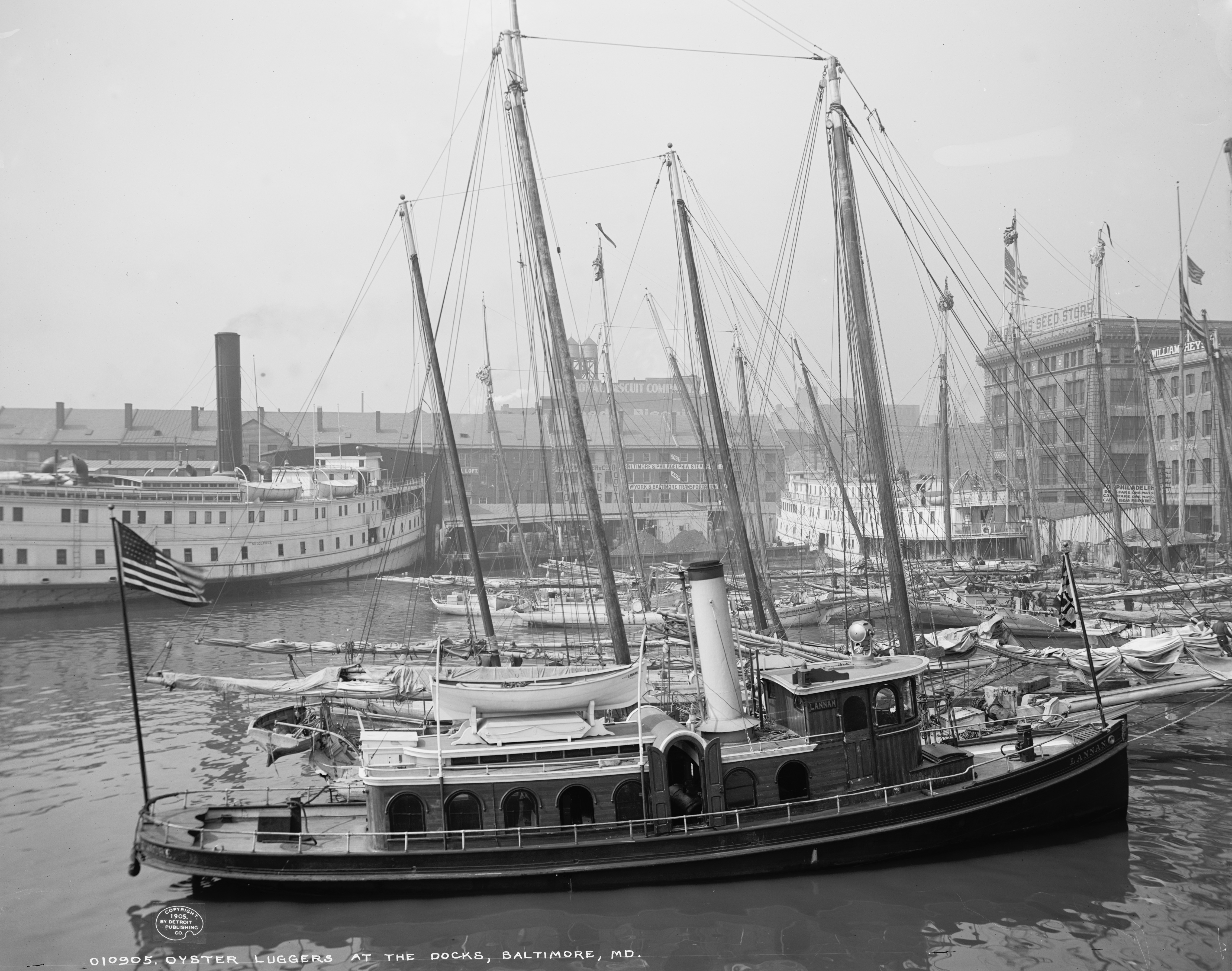 Oyster Luggers at the Docks